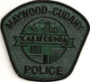 Highly suspicious fake Maywood-Cudahy Police subdued patch